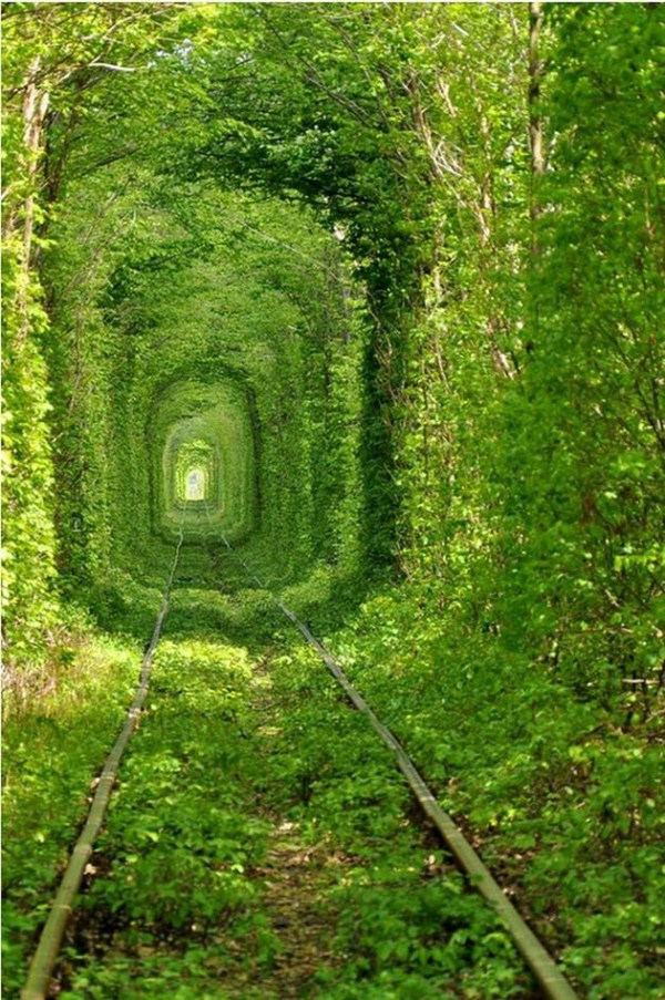 amazing paths and places around the world 1 - Amazing paths of the world